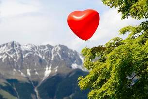 Red heart balloon, Nordkette, Tyrol, Austria, Europeの写真素材 [FYI02343457]