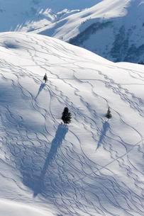Ski tracks in deep snow, Unterdamulser Alpe, mountainの写真素材 [FYI02343492]