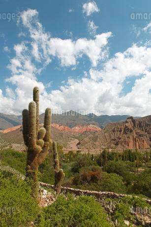 Humahuaca Canyon, Quebrada de Humahuaca, Jujuy Provinceの写真素材 [FYI02343507]