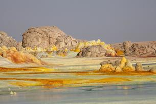Sulphur sediments in the thermal area of Dallolの写真素材 [FYI02343514]