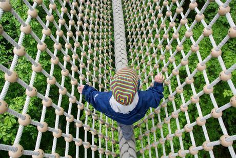 Toddler, 3 years, walking over a secured rope aboveの写真素材 [FYI02343525]