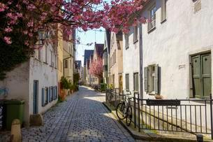 Small alley with cobblestone, Lechviertel, Augsburgの写真素材 [FYI02343581]