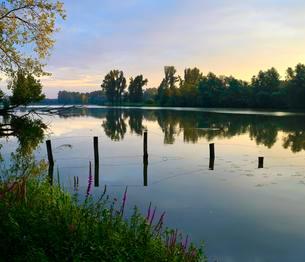 Alter Rhein, Xanten, North Rhine-Westphalia, Germany, Europeの写真素材 [FYI02343596]
