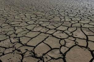 Dry cracks in the soil, Edersee, Edersee nature park Parkの写真素材 [FYI02343601]