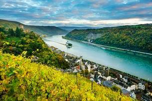 Gutenfels Castle and Pfalzgrafenstein Castle in the Rhineの写真素材 [FYI02343627]