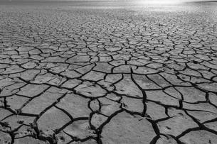 Dry cracks in the soil, monochrome, Edersee, Edersee natureの写真素材 [FYI02343719]