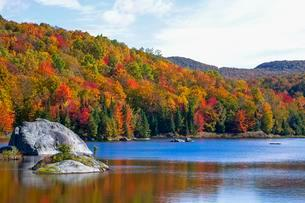 Small pond, early autumn colours, Eastern Townships, Westの写真素材 [FYI02343788]