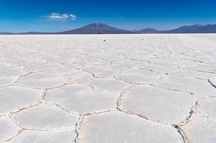 Structure of the salt crust, Salar de Uyuni, Altiplanoの写真素材 [FYI02343834]