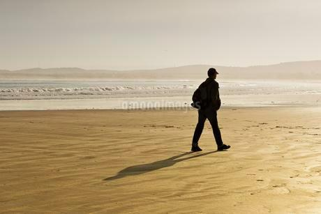 Rambler on the beach in winter, backlight, Plage Tagharteの写真素材 [FYI02343863]