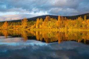 Autumn landscape, Mirroring, Kvikkjokk Delta, Riverの写真素材 [FYI02343868]
