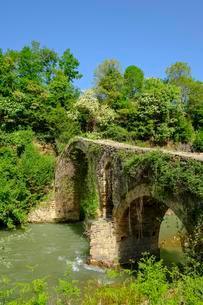 Old Ottoman stone arch bridge Ura e Golikut over riverの写真素材 [FYI02343870]