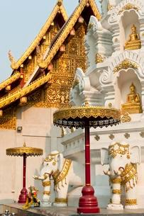 Elephants and Buddha statues at the Chedi or Stupa, templeの写真素材 [FYI02343942]