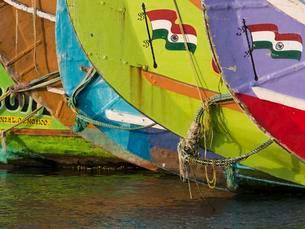 Fishing boats with Indian flag, Gundu Island, Keralaのイラスト素材 [FYI02343974]
