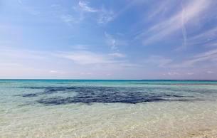 Sea and blue sky, Es Trenc, Majorca, Balearic Islandsの写真素材 [FYI02343976]