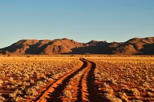 Sandtrack through desert landscape at evening light, in theの写真素材 [FYI02343985]
