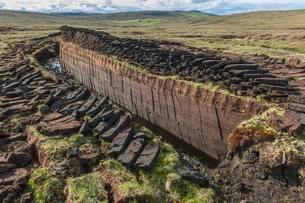 Cut peat on a peat bog, Yell, Shetland Islands, Scotlandの写真素材 [FYI02344050]