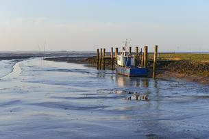 Fishing boat in a small harbor at low tide, Hallig Olandの写真素材 [FYI02344062]
