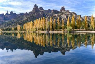 River Limay with poplars in autumn colour at Barilocheの写真素材 [FYI02344076]
