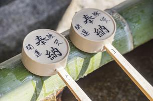 bamboo spoon; Temizuyaの写真素材 [FYI02344141]