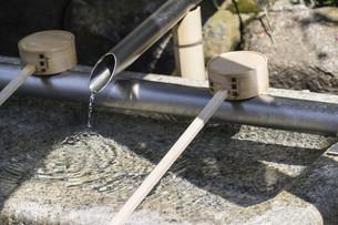bamboo spoon; Temizuyaの写真素材 [FYI02344194]