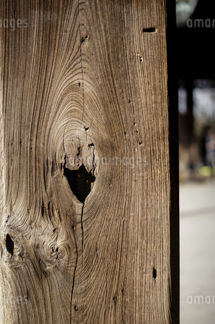 Close up of woodの写真素材 [FYI02344326]