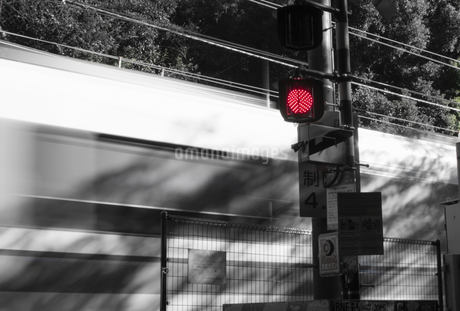 Traffic Lightの写真素材 [FYI02344403]