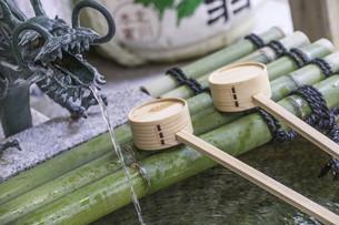 bamboo spoon; Temizuyaの写真素材 [FYI02344518]