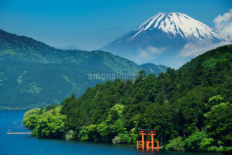芦ノ湖の箱根神社の鳥居と富士山の写真素材 [FYI02344536]