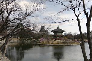Gyeongbokgung Palace; Seoul; South Koreaの写真素材 [FYI02344802]