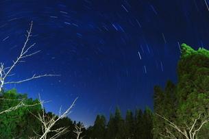 Star Trailsの写真素材 [FYI02344968]
