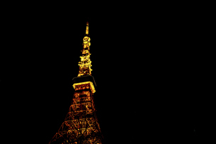 TokyoTower at the nightの写真素材 [FYI02345248]