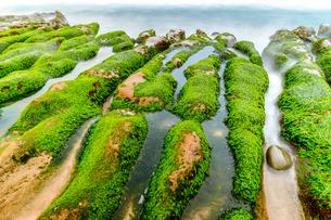 LaoMei Green Reef;Taiwanの写真素材 [FYI02345303]