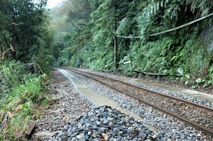 Railway in the forestの写真素材 [FYI02345318]
