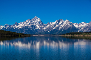 beauty of Grand Teton National Parkの写真素材 [FYI02345969]