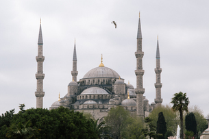 Blue mosque;Istanbul;Turkeyの写真素材 [FYI02346202]