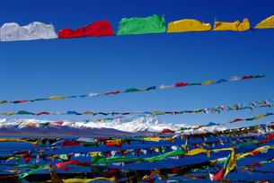 China Tibet Ali gang rinpozi peakの写真素材 [FYI02346536]