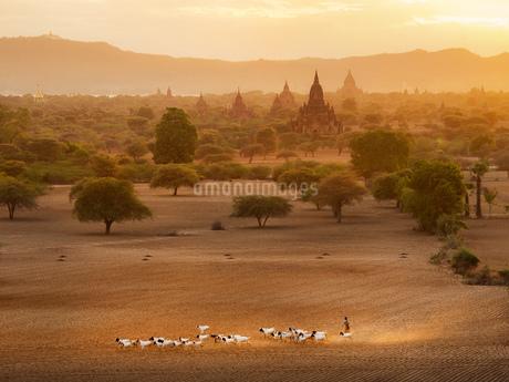 Myanmar Mandalay Pu Gan Templeの写真素材 [FYI02346585]