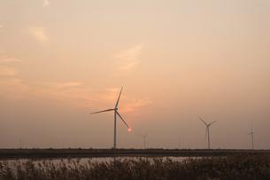 wind power generationの写真素材 [FYI02347089]