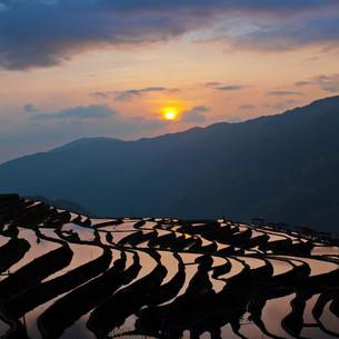 Jiabang Terrace field;Guizhou Province;Chinaの写真素材 [FYI02347265]