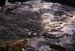 terrace field;Yunnan Province;Chinaの写真素材 [FYI02347284]