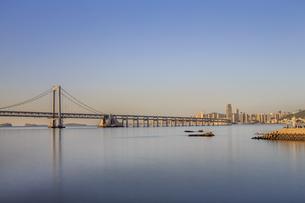 beauty of Dalianの写真素材 [FYI02347323]