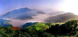 Jiabang terrace field;Guizhou Province;Chinaの写真素材 [FYI02347327]