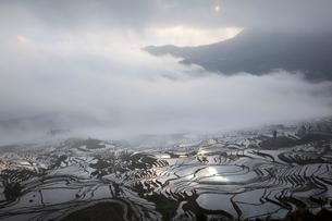 terrace field in Yunnan Province;Chinaの写真素材 [FYI02347340]