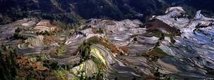 terrace field in Yunnan Province;Chinaの写真素材 [FYI02347343]