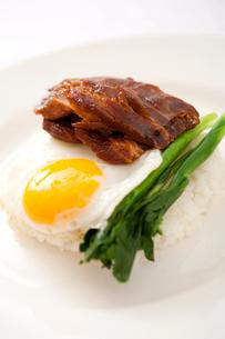 Roast goose with riceの写真素材 [FYI02348127]