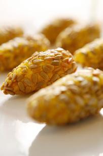 Seeds potato cakeの写真素材 [FYI02348245]