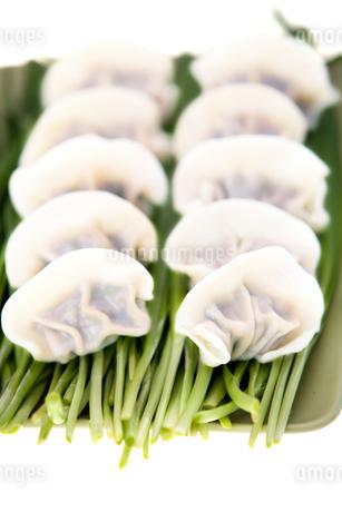 Dumplingsの写真素材 [FYI02348326]
