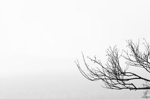 landscapeの写真素材 [FYI02348336]