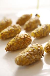 Seeds potato cakeの写真素材 [FYI02348514]
