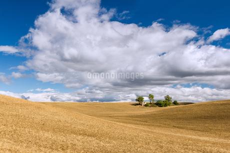 fieldの写真素材 [FYI02348726]